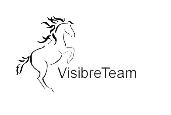 Visibre Team
